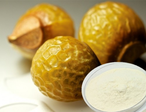 soapnut extract saponin