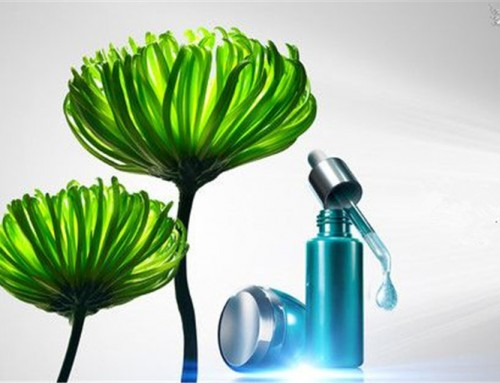 Application of Plant Active Ingredients in Cosmetics