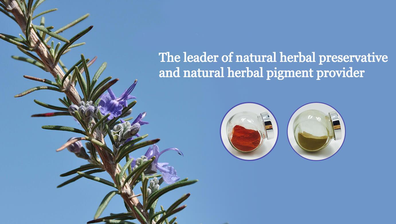 herbal preservative herbal pigment