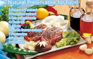 natural preservative for food