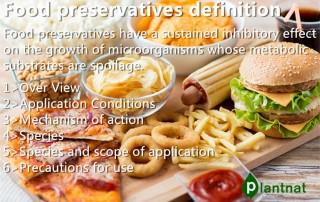 food preservation definition