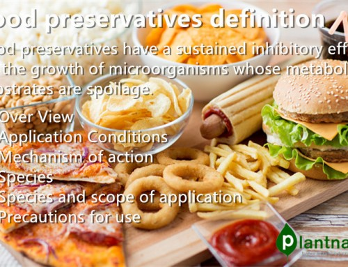 What is the food preservation definition?